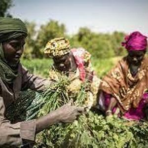 Autonomie & Agro-Écologie